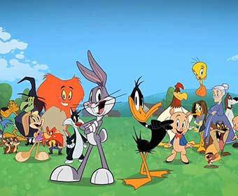 Which Looney Tunes Character Are You?
