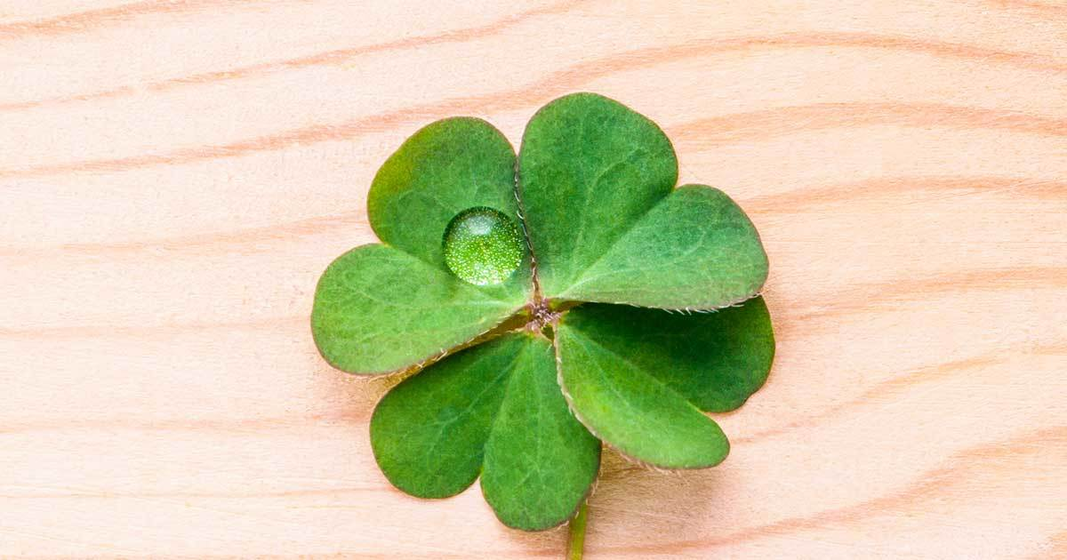 to wear - What Quiz: Your Lucky Charm? video